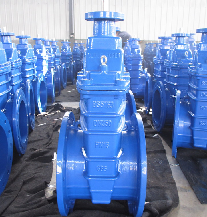 resilient seated gate valve with top flange