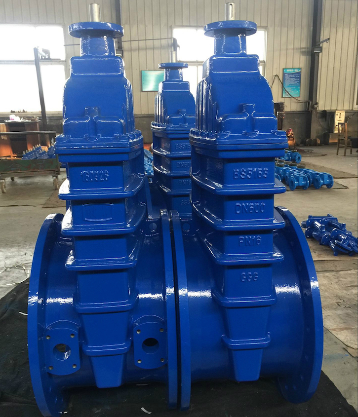 resilient seated gate valve with top flanged
