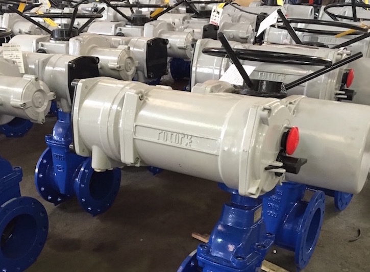 Resilient wedge gate valve with ROTORK actuator